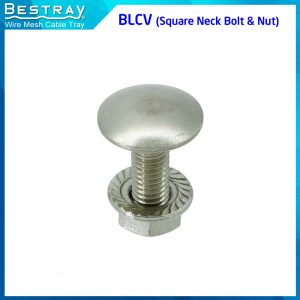 BLCV (Square Neck Bolt & Nut)